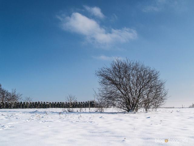 Fotografowanie śniegu